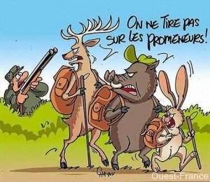 accident de chasse isère